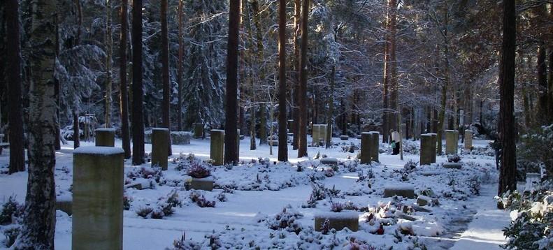 Über den Heidefriedhof